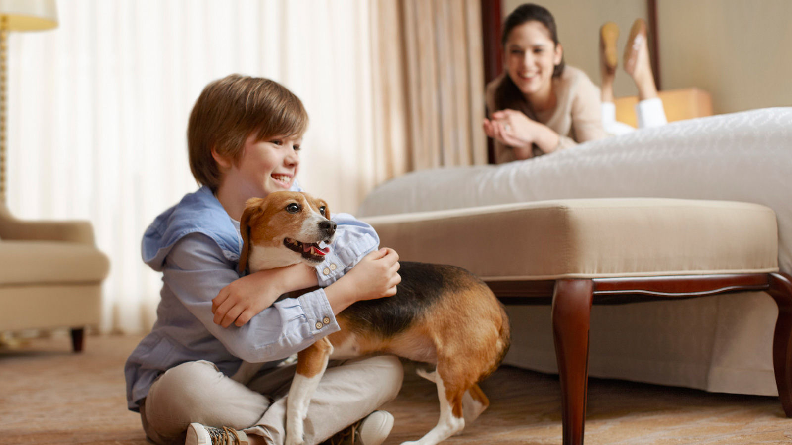 Sheraton Suites Country Club Plaza - Pet-Friendly Hotel